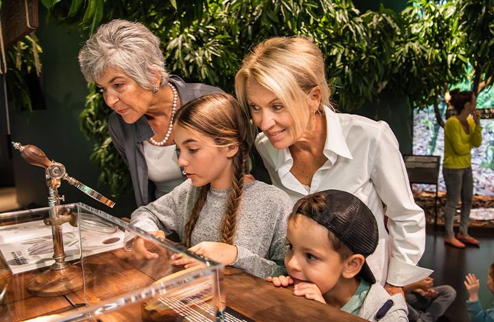 Circuit autour du chocolat billet famille